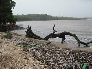 Plastic Waste at Coco Beach, outfall of Mandov...