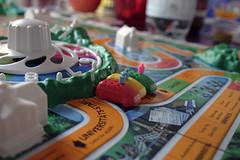 playing game of life