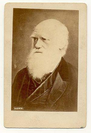 English: A carte de visite photograph of Charl...