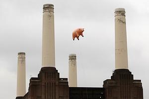 Pink Floyd Speaks Out Against Pandora
