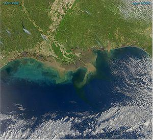 English: Sediment-laden water pours into the n...