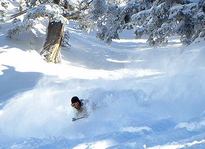 That'll do. A lot of resorts have pictures of people skiing powder, but Alta can take one almost... [+] every day.