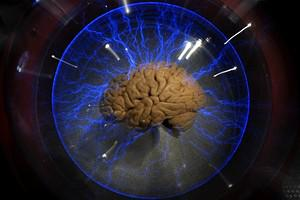 An actual human brain displayed inside a glass...