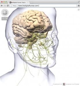 3D Digital Model Of Human Body Attracts VC Funding