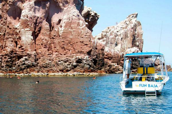 Swimming off Fun Baja. Photo: Courtesy of La Paz Tourism Board.