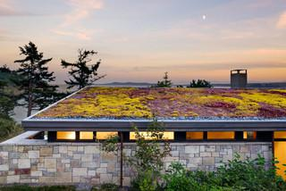 6 Busted Green Roof Myths