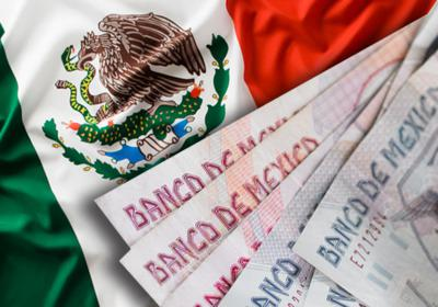 mexico mexican crisis 1994 essay Accounting for the mexican banking crisis banking crisis mexico 1 introduction in 1994]1995 mexico went through its worst crisis since the great depression a.