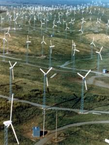 A section of Altamont Pass Wind Farm, California. Source: DOE EERE