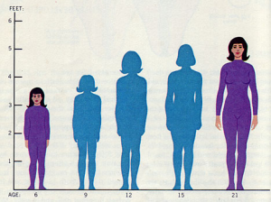 Being taller may increase cancer risk for women, say researchers (photo: NIH/HHS)