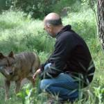 Dr. Francisco Fonseca, President of Portugal's Grupo Lobo with rescued Iberian Wolf Friend © M. C.... [+] Tobias