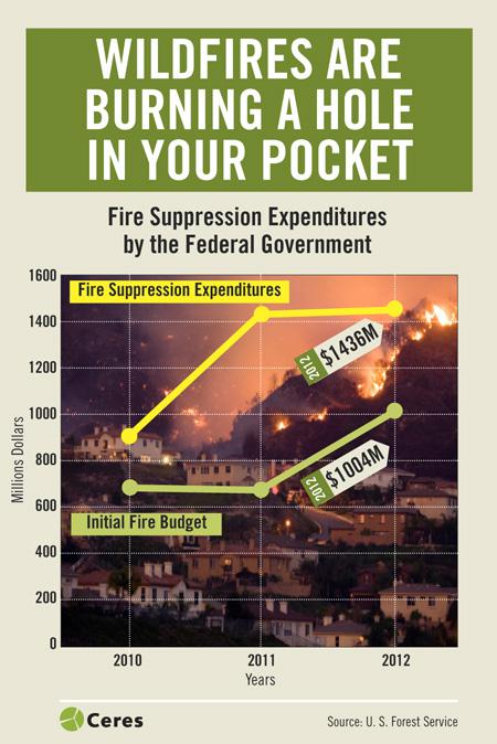 understanding wildfire suppression essay Presents the current understanding of the role of wildfire the ecological role of fire is a topic that probably is long-term value of fire suppression.