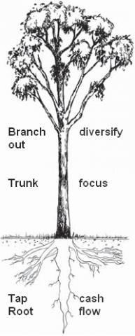 5 Things Business Can Learn From A Tree