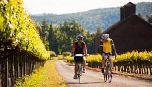 6 Leadership Lessons Learned On A 'Backroads' Bike Trip