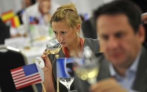 Professionals in the wine sector taste wine du...