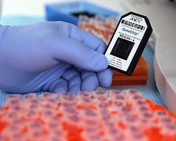 An Affymetrix GeneChip DNA microarray loaded w...